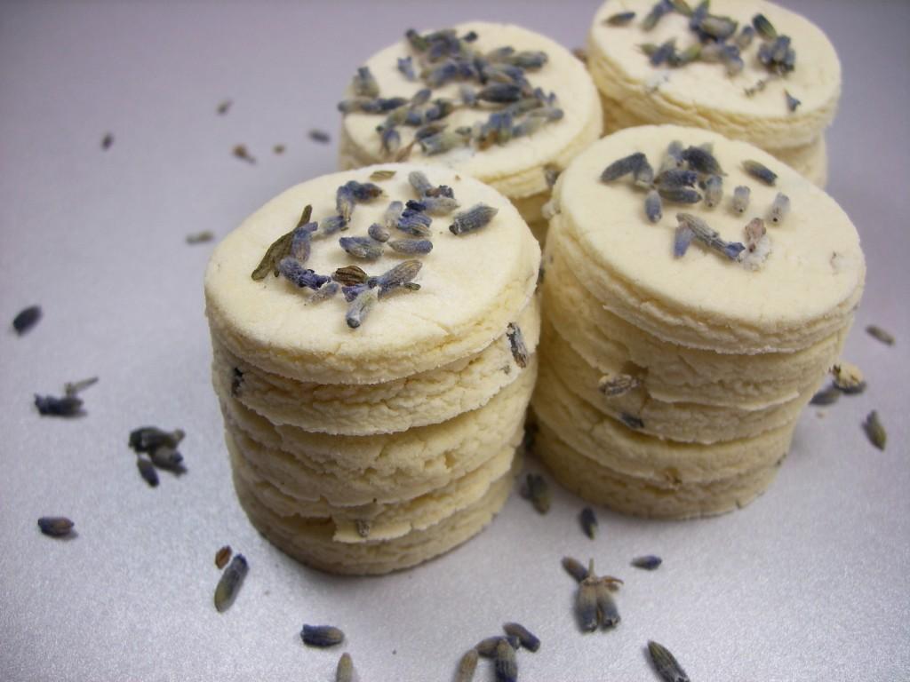 Lavender Vanilla Rounds DoggyDessertChef.com