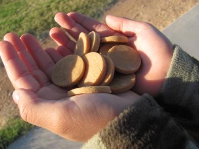 Easy Peasy Rice Flour Peanut Butter Treats DoggyDessertChef.com