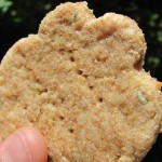 creamy chicken dog treat/biscuit recipe