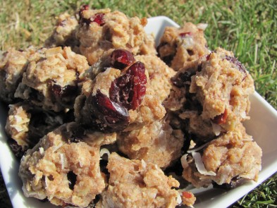 cranberry coconut dog treat biscuit/recipe