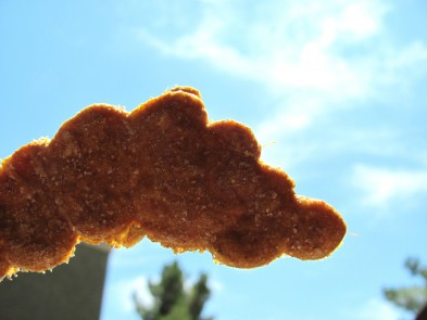 sweet potato molasses dog treat/biscuit recipe