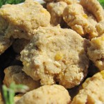 (wheat-free) oatmeal chedder dog treat/biscuit recipe