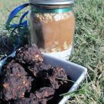 peanut carob clusters {gift jar recipe}