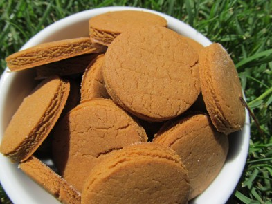 (Gluten-Free) Peanut Butter Molasses Dog Treat/Biscuit Recipe