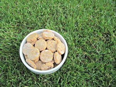 (gluten-free) apple cranberry dog treat/biscuit recipe