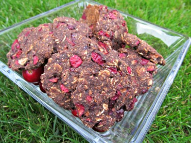 carob cranberry oatmeal dog treat/biscuit recipe
