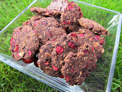 carob cranberry oatmeal dog treat/biscuit recipe