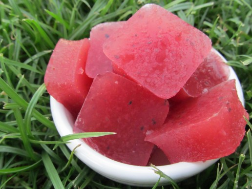 watermelon blueberry knox blox dog treat recipe