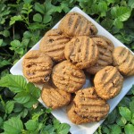 cranberry oat peanut butter