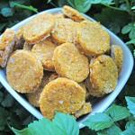 (wheat-free) pumpkin chicken dog treat/biscuit recipe