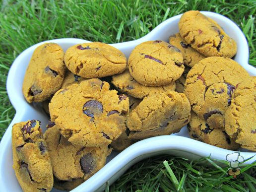 (wheat and gluten-free) carob cranberry pumpkin dog treat/biscuit recipe