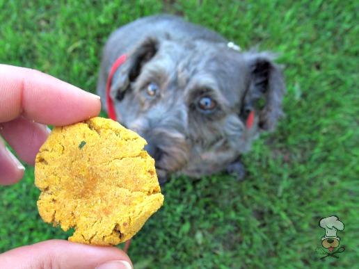 (gluten, grain and wheat-free) parsley pumpkin chicken dog treat/biscuit recipe