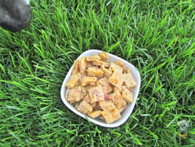 (wheat-free) bacon cheddar thyme dog treat/biscuit recipe