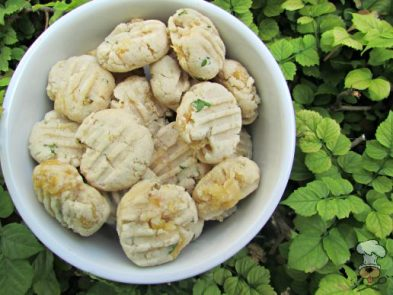 (wheat and gluten-free) coconut chicken dog treat/biscuit recipe
