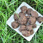 (wheat, gluten, grain and diary-free, vegan, vegetarian) banana carob chip dog treat/biscuit recipe