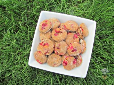 (dairy-free) cranberry butternut squash dog treat/biscuit recipe