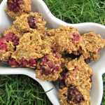 (wheat and dairy-free, vegan, vegetarian) blackberry apple dog treat recipe