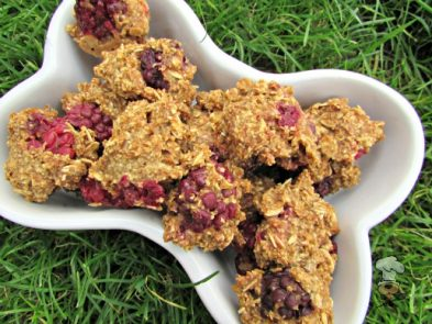 (wheat and dairy-free, vegan, vegetarian) blackberry apple dog treat recipe