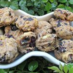 (dairy-free) blueberry rosemary chicken dog treat/biscuit recipe