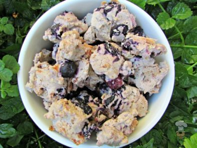 (wheat, gluten and dairy-free) blueberry ham dog treat/biscuit recipe