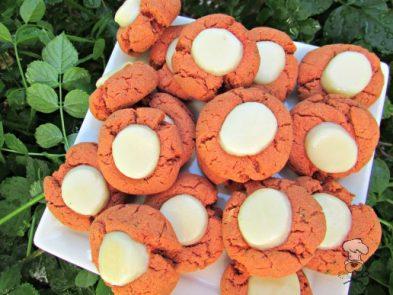 (wheat and gluten-free) tomato mozzarella dog treat/biscuit recipe