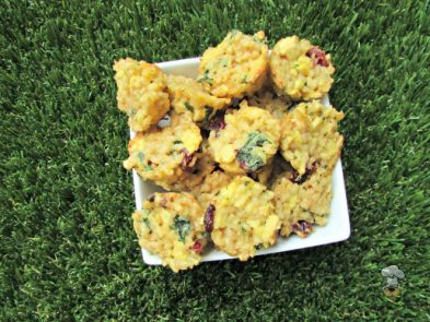 (wheat, gluten and dairy-free) chicken cranberry kale dog treat recipe