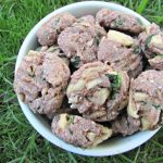 (wheat and dairy-free) raspberry spinach chicken dog treat/biscuit recipe