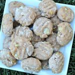 (wheat and dairy-free) rosemary banana dog treat/biscuit recipe