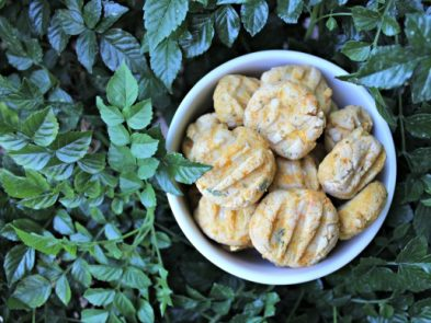 (wheat, gluten and dairy-free) butternut squash chicken dog treat/biscuit recipe