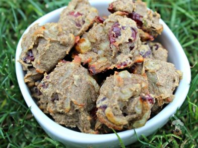 (gluten and grain-free) apple swiss cranberry dog treat/biscuit recipe