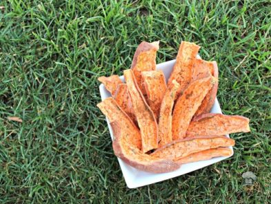 (wheat, grain, gluten and dairy free, vegan, vegetarian) apple rosemary sweet potato chews dog treat recipe