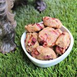 (wheat and dairy-free, vegan, vegetarian) cherry flaxseed dog treat/biscuit recipe