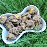 (gluten, wheat and dairy-free, vegan, vegetarian) banana mango dog treat/biscuit recipe