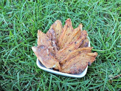 (gluten, grain, wheat and dairy-free) cherry berry chicken jerky dog treat recipe