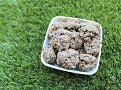 (wheat and dairy-free, vegan, vegetarian) blueberry cantaloupe dog treat/biscuit recipe