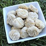(gluten, wheat and dairy-free) rosemary apple chicken dog treat/biscuit recipe