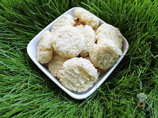 (gluten and wheat-free) cheesy chicken & rice dog treat/biscuit recipe