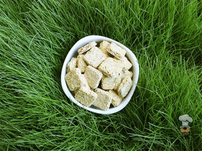 (wheat and dairy-free, vegan, vegetarian) maple cinnamon squash dog treat/biscuit recipe