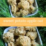 Sweet Potato Apple Oat Dog Treat Recipe