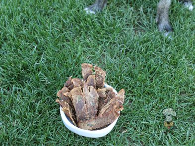 (grain. gluten, wheat and dairy-free) pineapple beef jerky dog treat recipe
