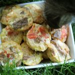 (gluten and dairy-free) tomato beef with eggs dog treat recipe