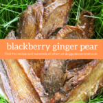 Blackberry Ginger Pear Chicken Jerky Dog Treat Recipe