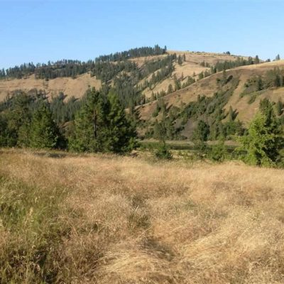 Idaho Land with Water