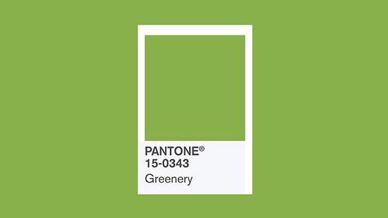 Celebrate Pantone's 2017 Color of the Year