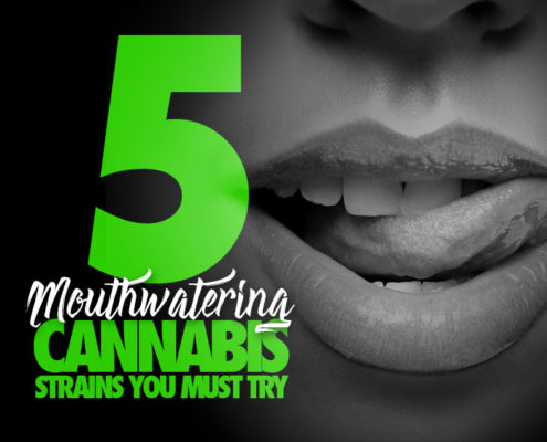 Mouthwatering Cannabis Strains to Try