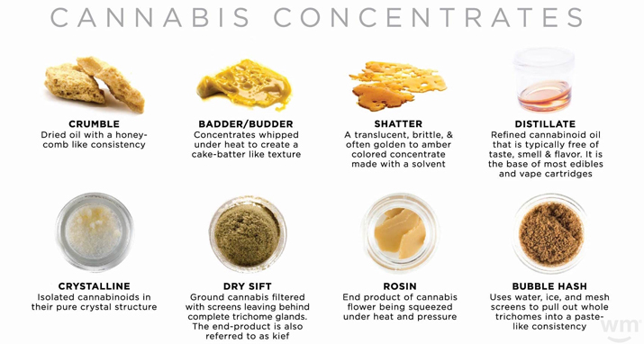 Cannabis Concentrates Guide from Colorado Cannabis Tours