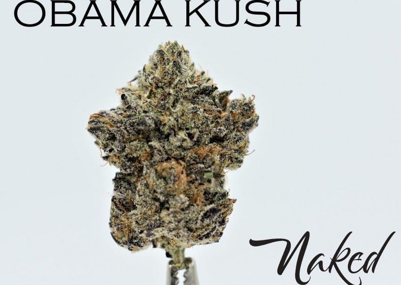 Obama Kush by Naked