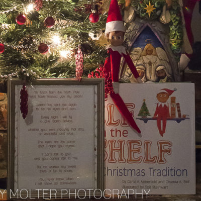 The Elf on the Shelf: A Christmas Tradition Book Review
