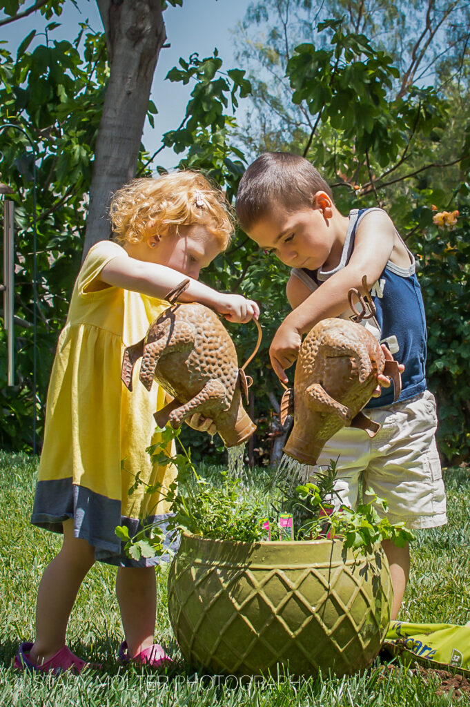 How to Plant a Herb Garden with Kids