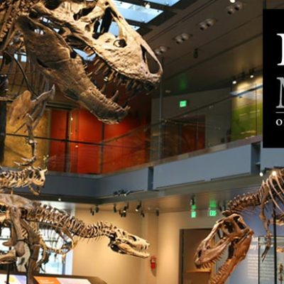 2015 Homeschool Days at the Natural History Museum